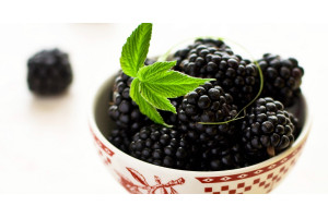 Thickshake Premix Black Cherry