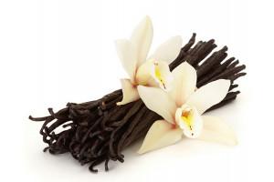 Milkshake Premix Vanilla